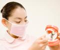妊娠中で歯周病対策をしたい